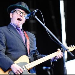 Elvis Costello similar artists similar-artist.info