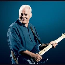 David Gilmour similar artists similar-artist.info