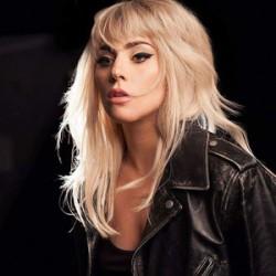 Lady Gaga similar artists similar-artist.com