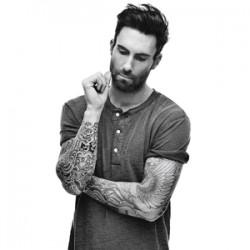 Adam Levine similar artists similar-artist.info